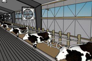Trang trại chăn nuôi – Cooling Farm